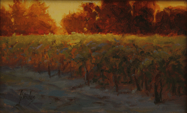 Sun Glow on the Grapes