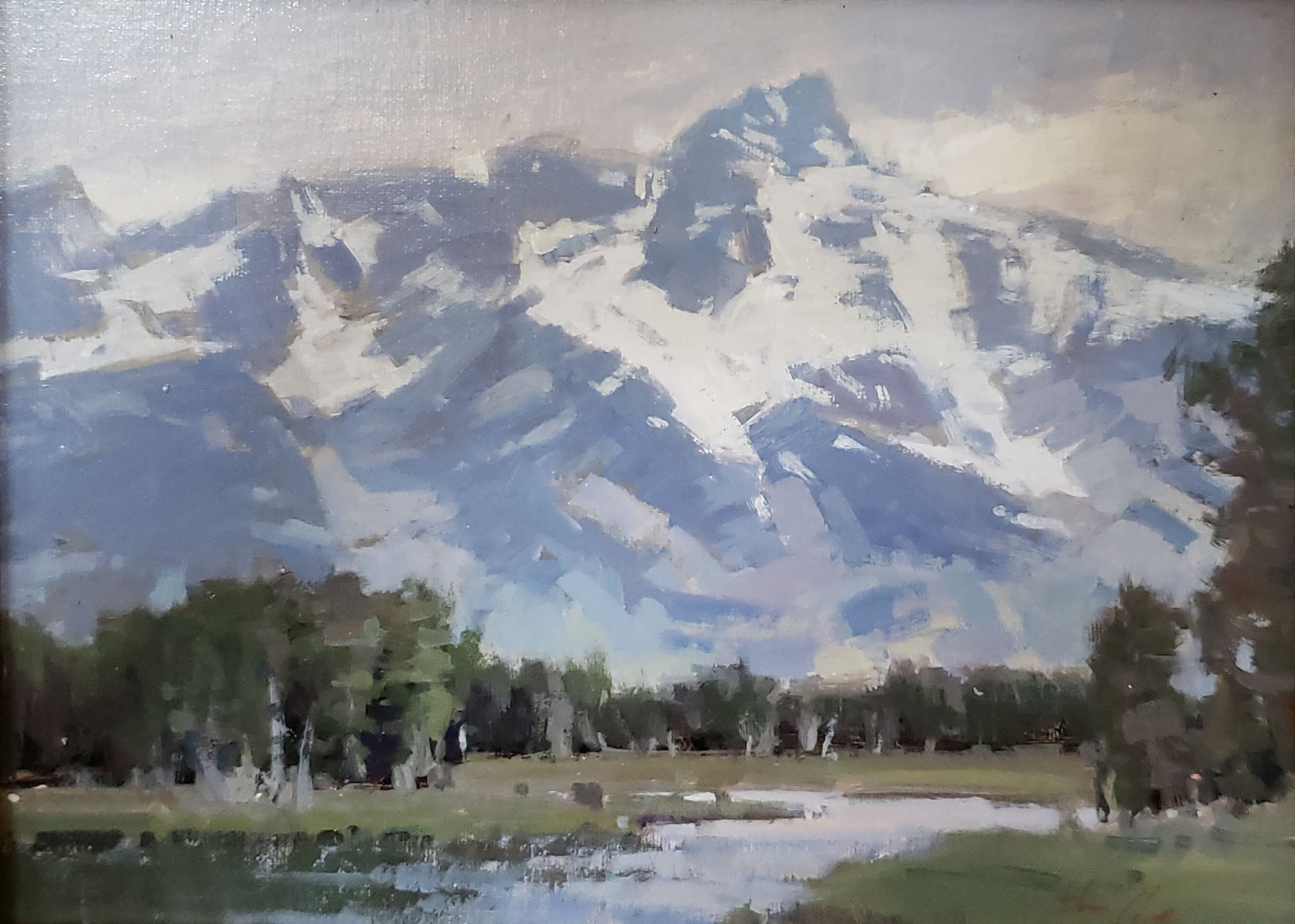 Wyoming Giant